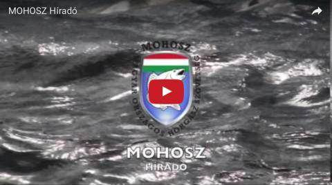 MOHOSZ Híradó - hamarosan